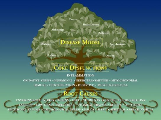 Functional-Medicine-Tree
