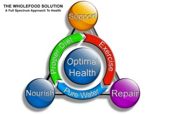 healthmodel